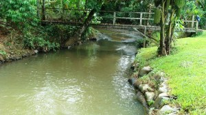 Sungai Endap, The River Crossing the Property